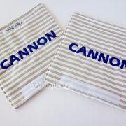 PCCannon1