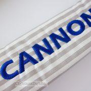 PCCannon5